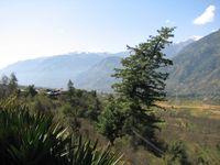 Mountainskullu
